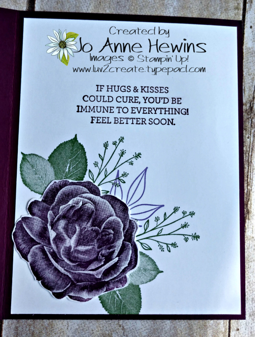 Healing Hugs Inside by Jo Anne Hewins