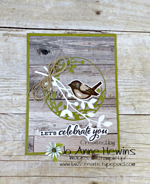 Birds and Branches by Jo Anne Hewins