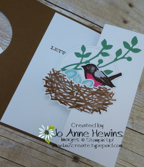 OSAT Birds and Branches Tucked Z Fold Inside by Jo Anne Hewins