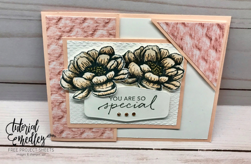 Tutorial Medley for July Tasteful Touches by Carol Mitchell-Cusick