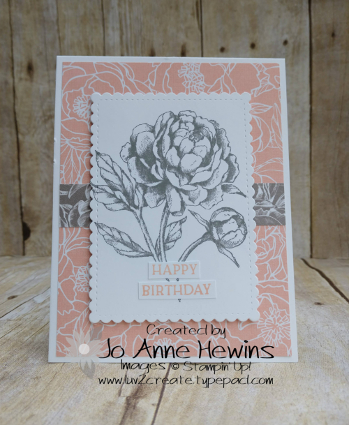Prized Peony Card by Jo Anne Hewins