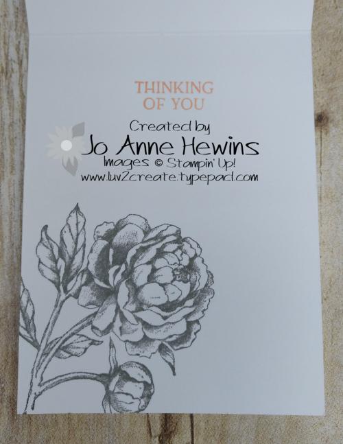 Prized Peony Inside by Jo Anne Hewins