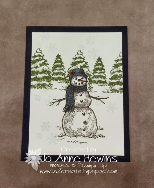 Masking Snow Wonder by Jo Anne Hewins