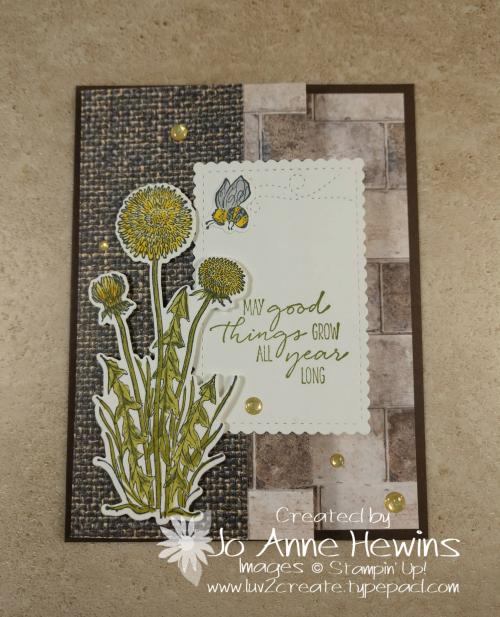Garden Wishes Fun Fold by Jo Anne Hewins