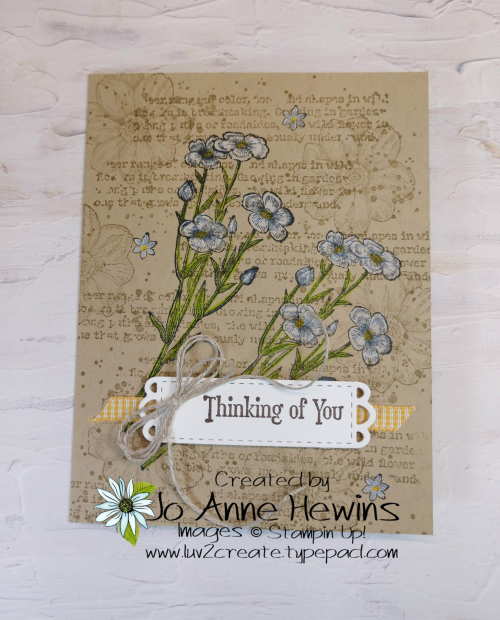 Quiet Meadow Single Layer Card by Jo Anne Hewins