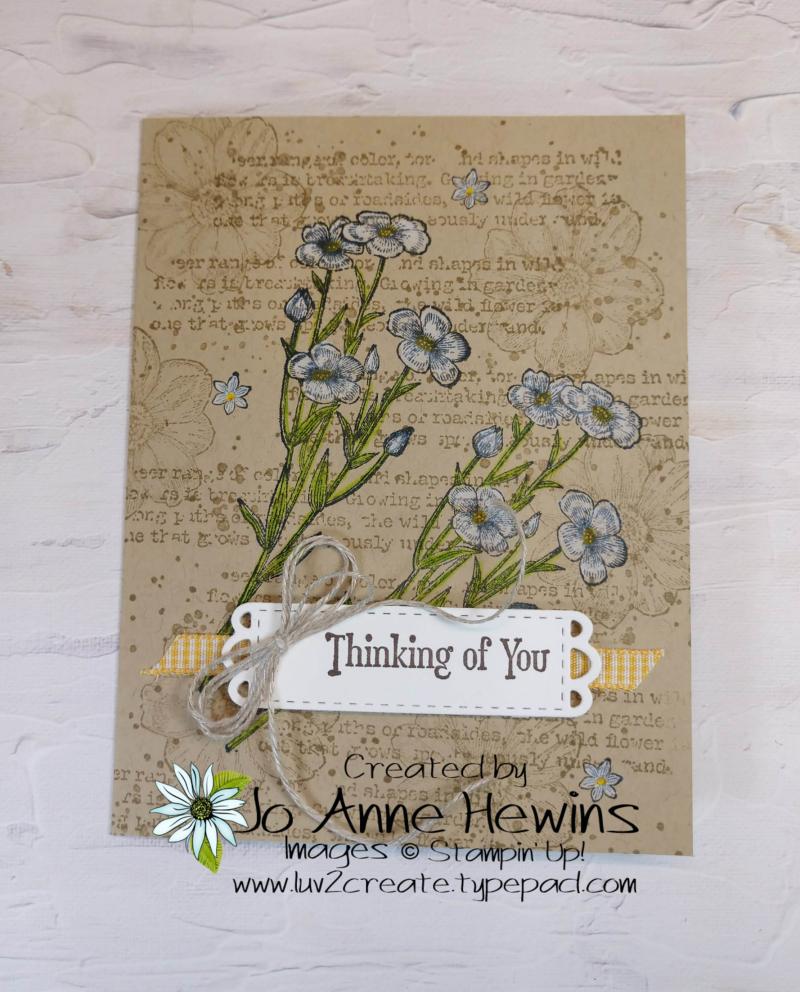 Quiet Meadow Single Layer Card by Jo Anne Hewins