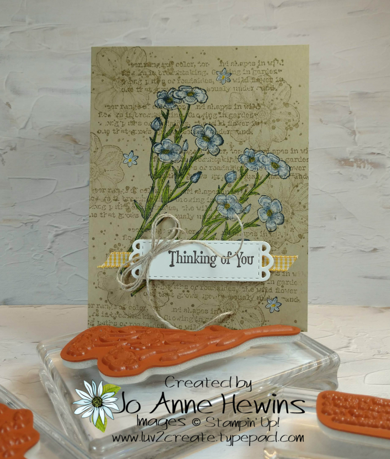 Quiet Meadow Single Layer Card with Stamps by Jo Anne Hewins