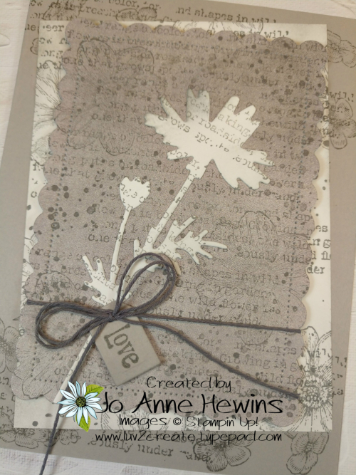 Quiet Meadow in Gray Granite Close Up by Jo Anne Hewins