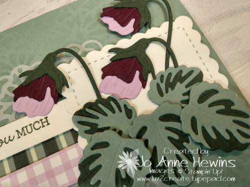 Pansy Patch Close Up by Jo Anne Hewins