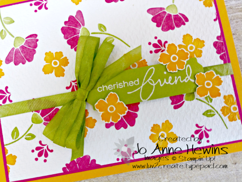 CCMC #617 Lovely You Close Up by Jo Anne Hewins