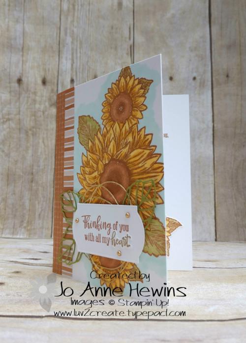 CCMC #619 Celebrate Sunflowers Card by Jo Anne Hewins