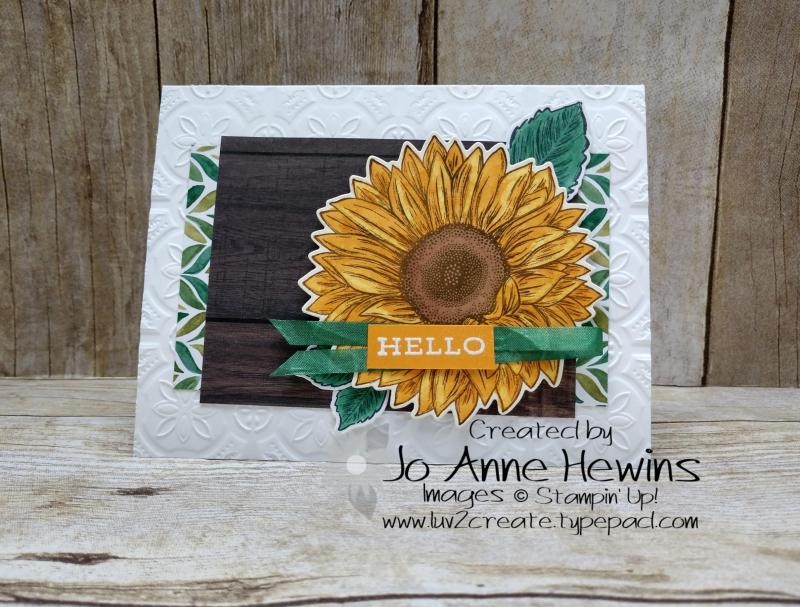 CCCM#614 Celebrate Sunflowers by Jo Anne Hewins