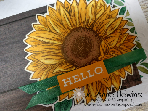CCMC #614 Celebrate Sunflowers by Jo Anne Hewins
