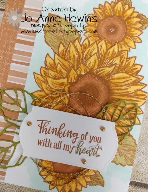 CCMC #619 Celebrate Sunflowers Close Up by Jo Anne Hewins