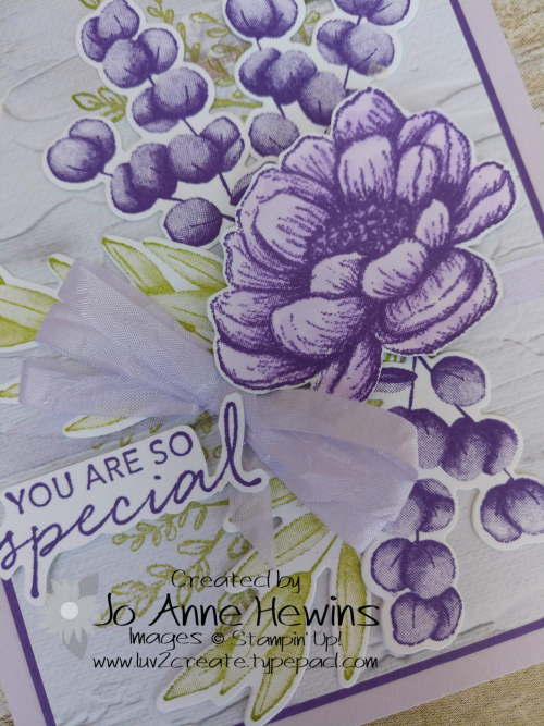 Color Fusers Tasteful Touches for August  Close Up by Jo Anne Hewins