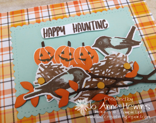 NC Demo Blog Hop Birds & Branches Halloween Close Up by Jo Anne Hewins