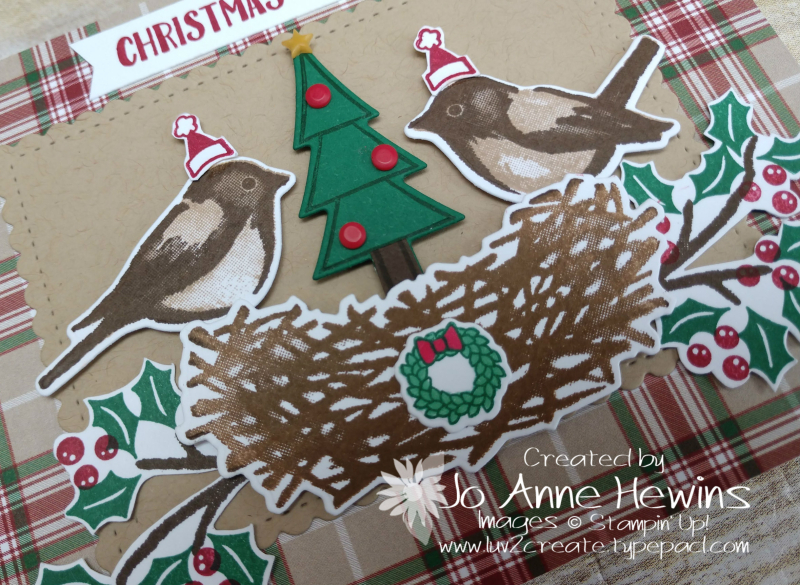 NC Demo Blog Hop Birds & Branches Christmas Close Up of Card by Jo Anne Hewins