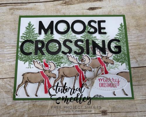 Tutorial Medley for October Merry Moose