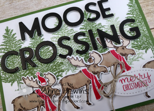 Moose Crossing Close Up by Jo Anne Hewins