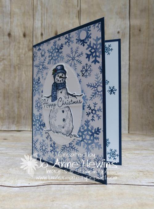 Snow Wonder & Snowflake Splendor DSP Project by Jo Anne Hewins