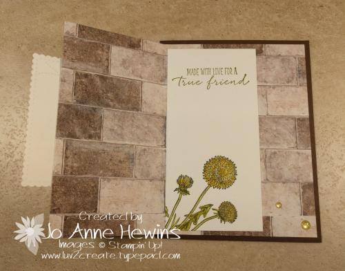 Garden Wishes Fun Fold Inside by Jo Anne Hewins