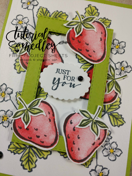Tutorial Medley Sweet Strawberry January Close Up