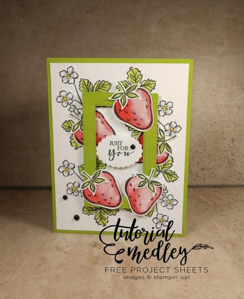 Tutorial medley Sweet Strawberry Jan