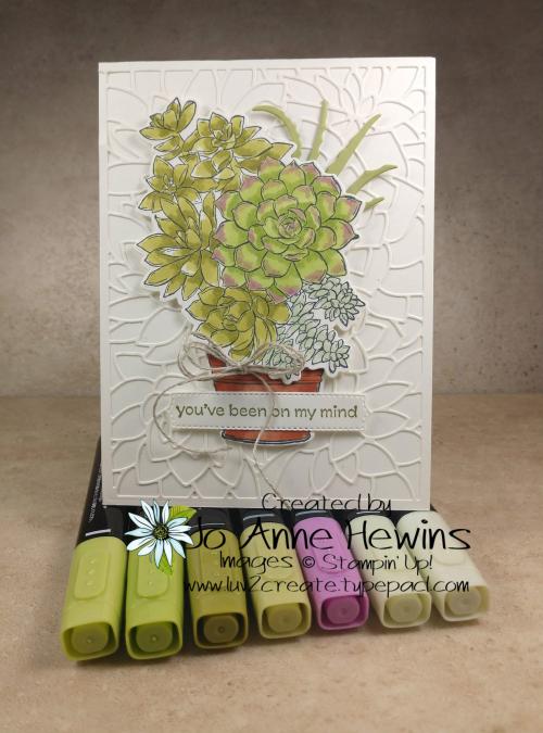 OSAT Jan Simply Succulent Blends by Jo Anne Hewins