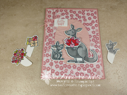 Kangaroo & Company Family Pouch Selections by Jo Anne Hewins
