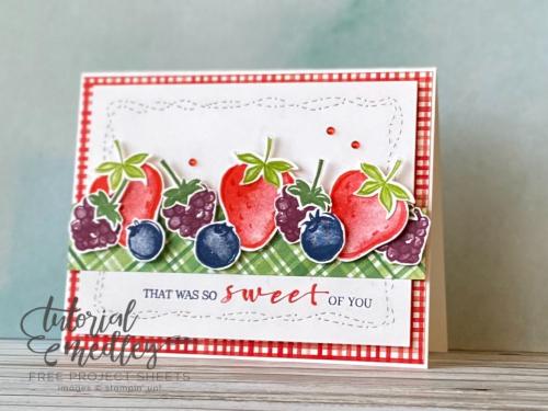 Tutorial Medley Berry Blessings