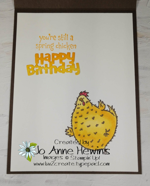NC Blog Hop Hey Birthday Chick Inside by Jo Anne Hewins