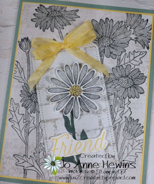 NC Demo Blog Hop for May Daisy Garden and Daisy Lane Close Up by Jo Anne Hewins