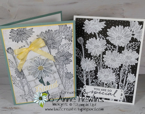 NC Demo Blog Hop for may Daisy Garden Duo by Jo Anne Hewins