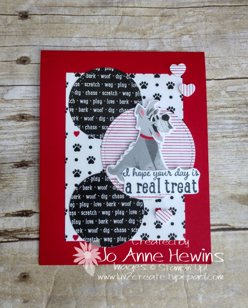 CCMC #627 Pampered Pets Card by Jo Anne Hewins