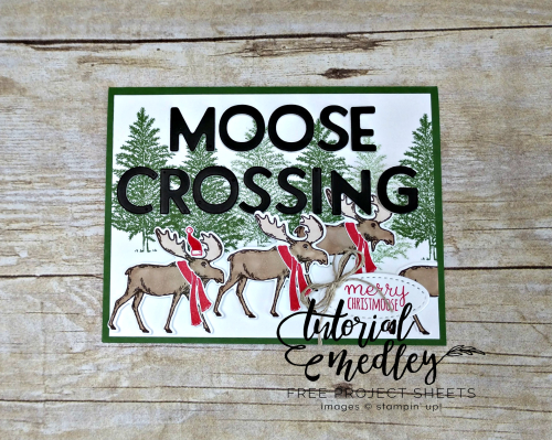 Tutorial Medley for October Merry Moose by Jo Anne Hewins