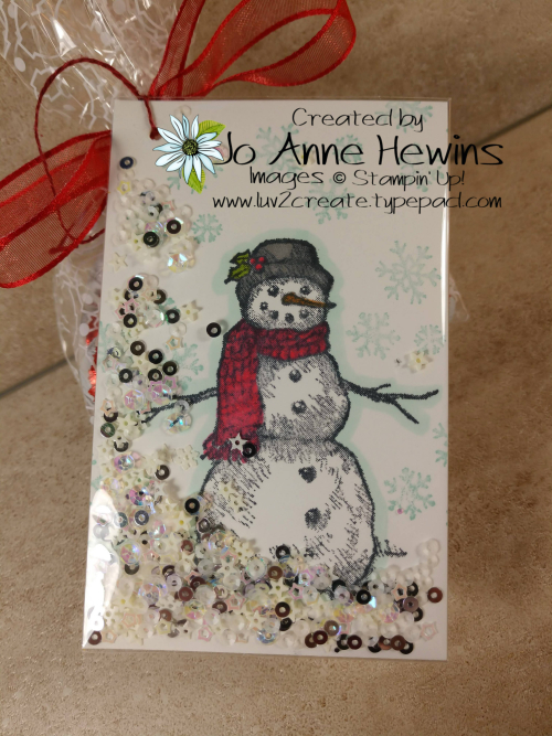 Snow Wonder Shaker Tag with Clear Envelope by Jo Anne Hewins