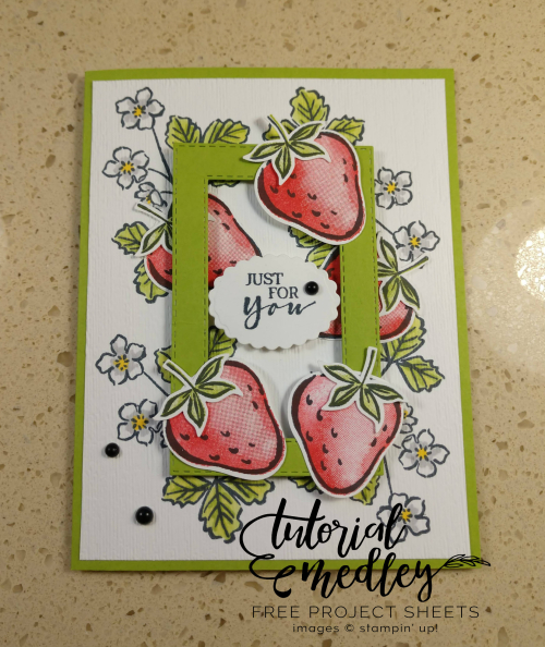Tutorial Medley Sweet Strawberry January Card