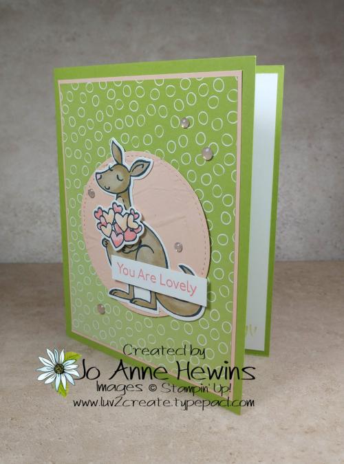 Kangaroo & Company Project by Jo Anne Hewins