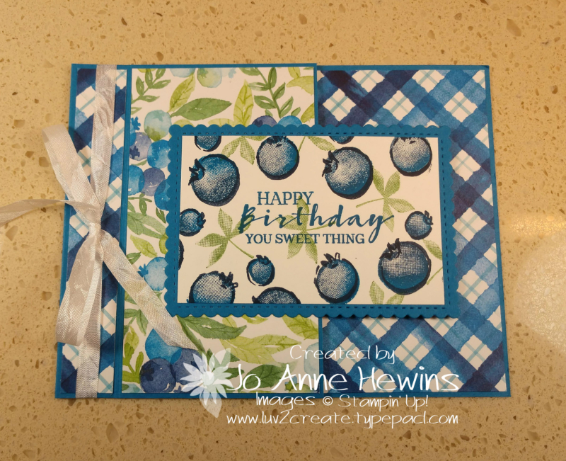 Sweet Strawberry Class Blueberry Project by Jo Anne Hewins