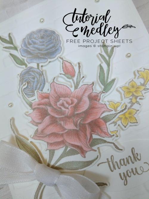 Tutorial Medley May Flowering Blooms Close Up