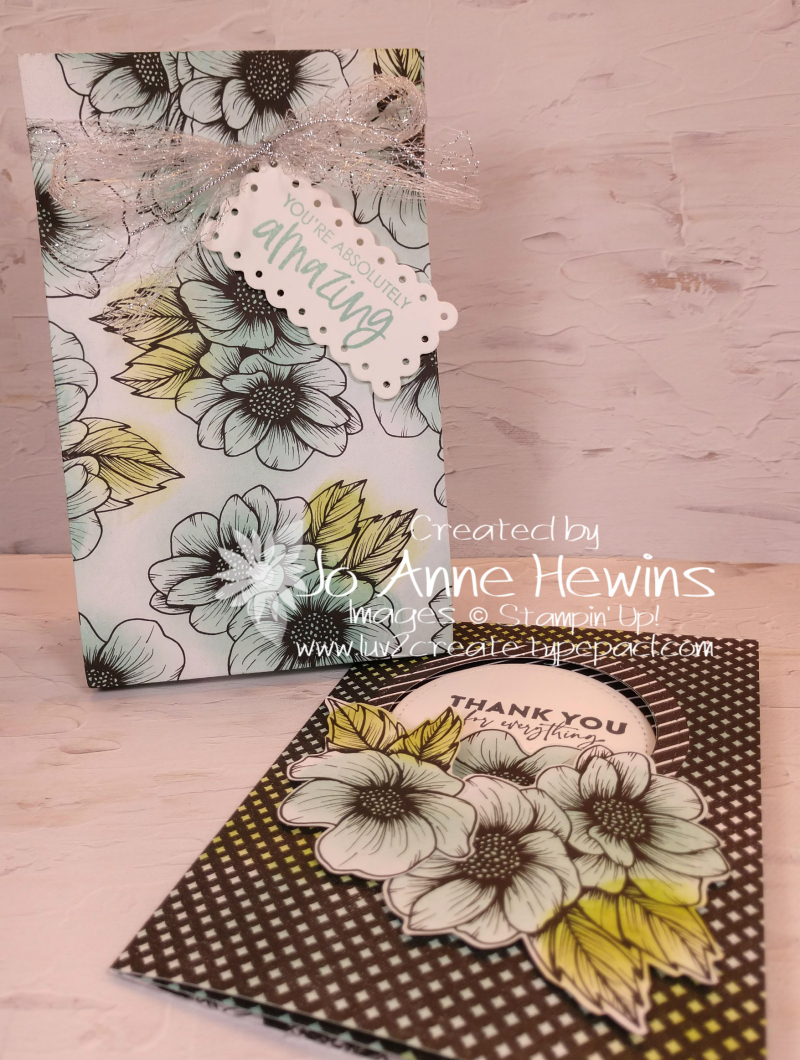 Facebook Live 4.21.2021 Bag and Card by Jo Anne Hewins