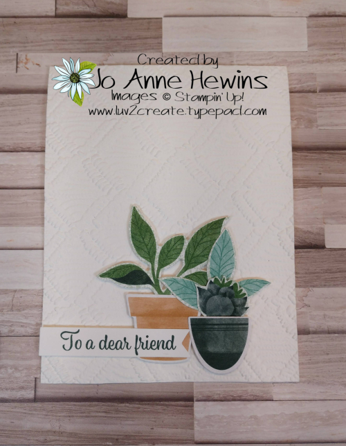 Facebook Live 5.26.2021 Plentiful Plants with Macrame EF by Jo Anne Hewins