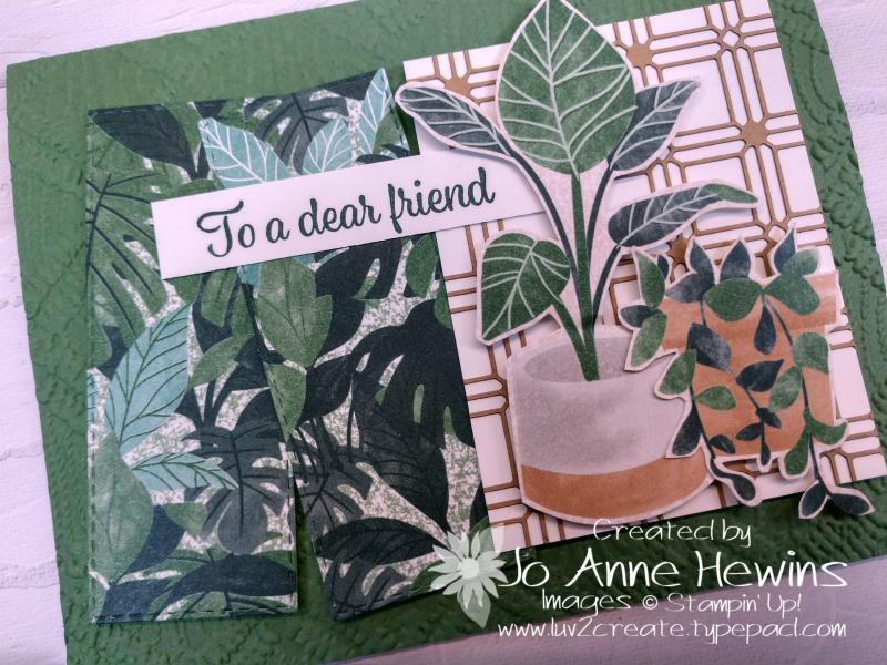 CCMC #668 Plentiful Plants Close Up by Jo Anne Hewins