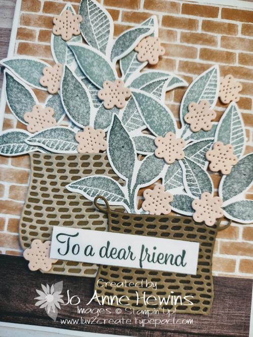 NC Demo Blog Hop for June Plentiful Plants Close Up by Jo Anne Hewins