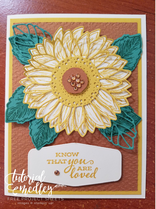 Tutorial Medley Celebrate Sunflowers