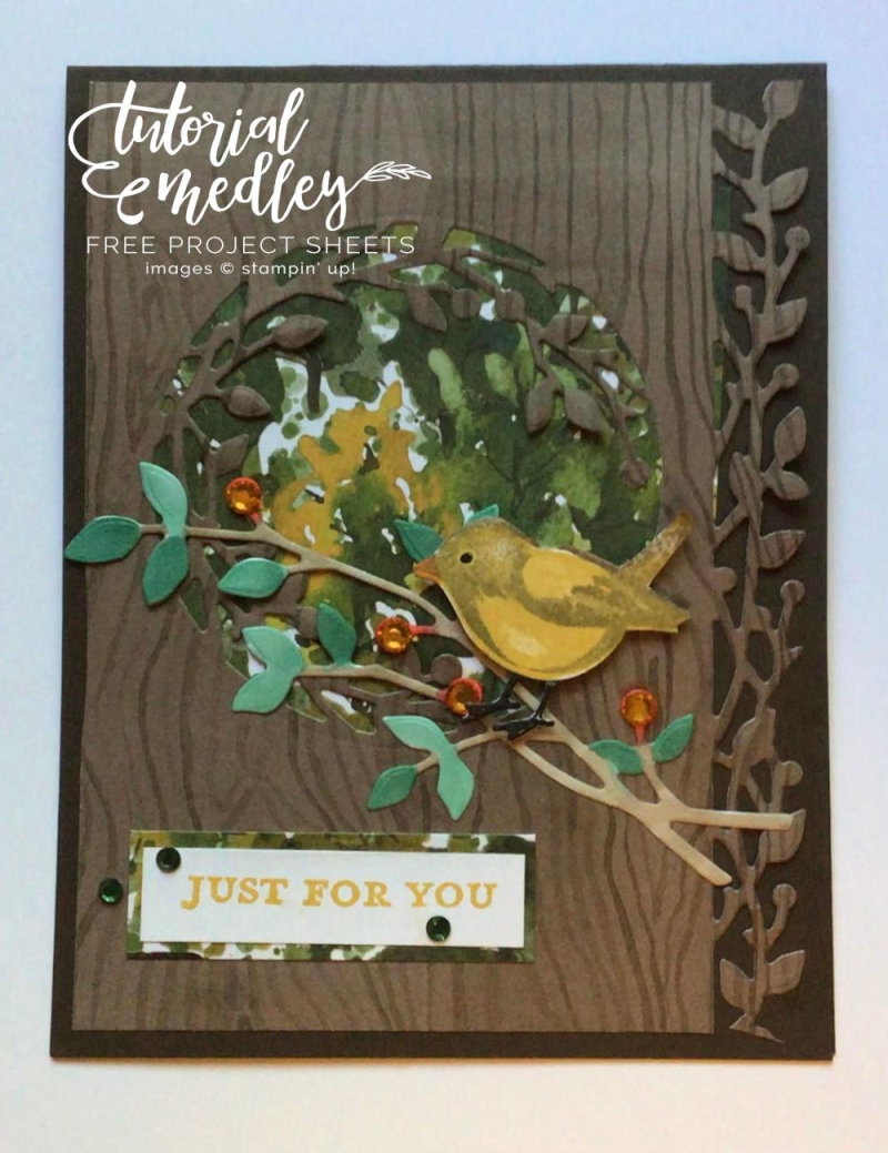 Tutorial Medley birds and branches