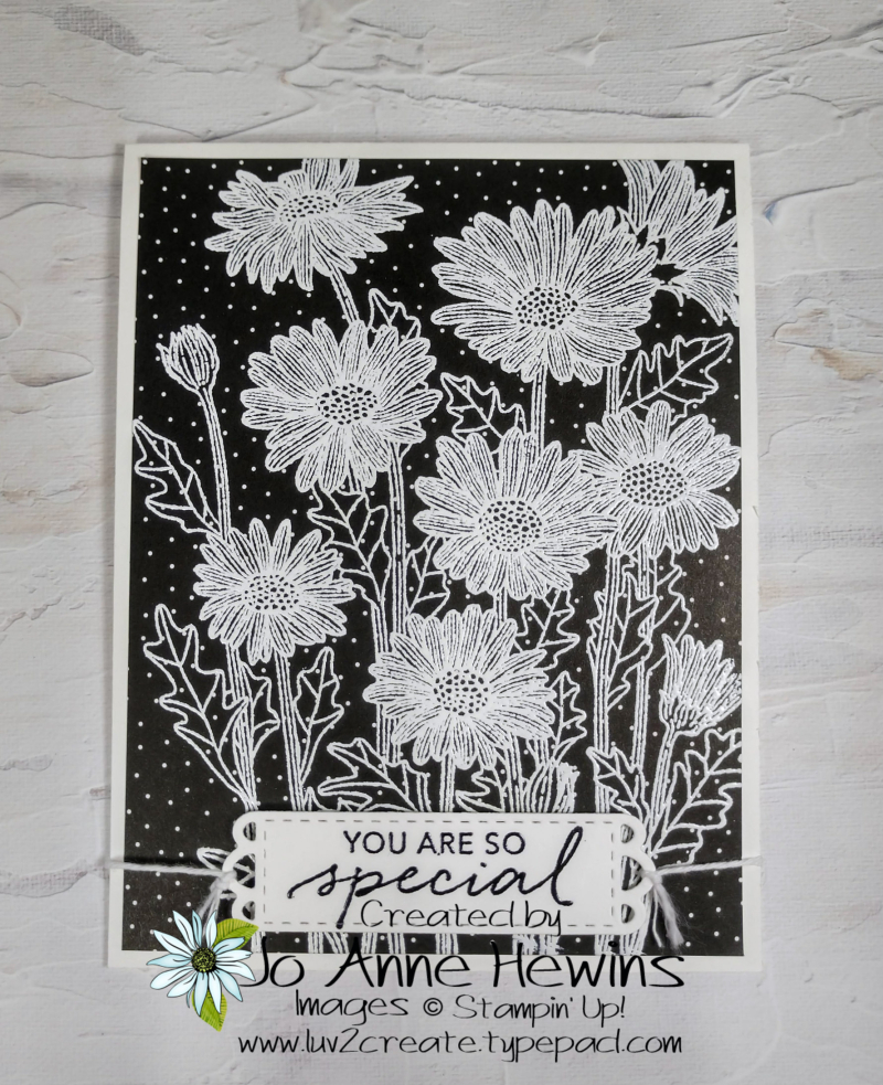 NC Demo Blog Hop for May Daisy Garden and Tasteful Touches Project by Jo Anne Hewins