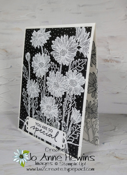 NC Demo Blog Hop for May Daisy Garden and Tasteful Touches Card by Jo Anne Hewins