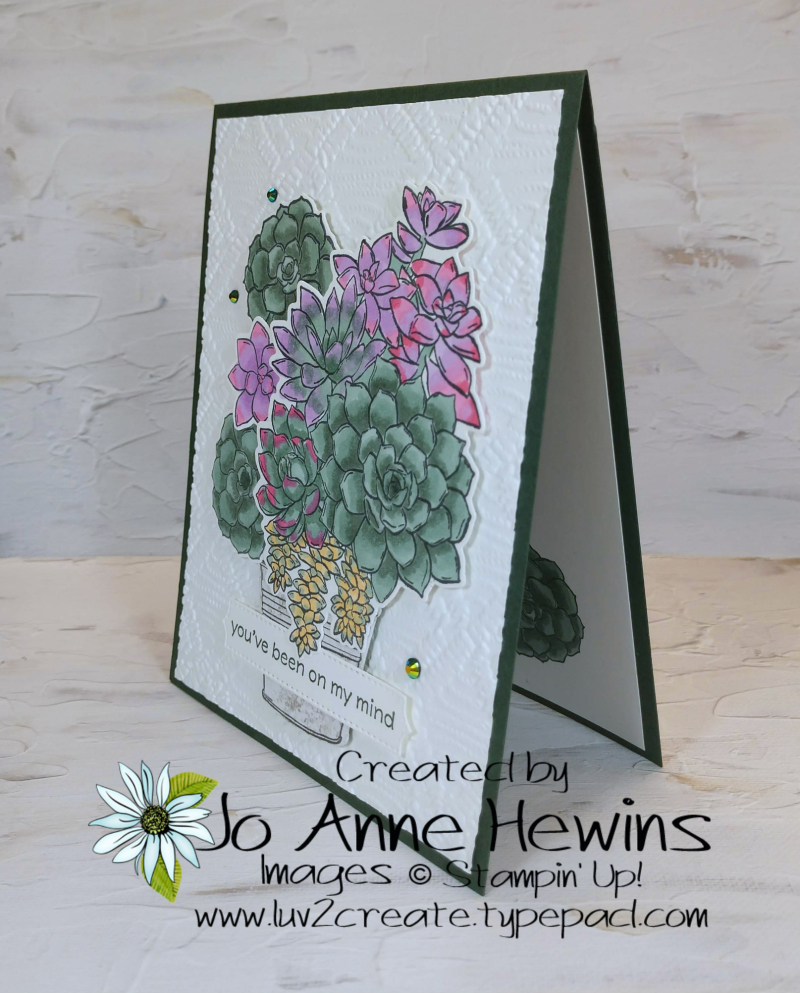Color Fusers for June 2021 Simply Succulents In Colors by Jo Anne Hewins