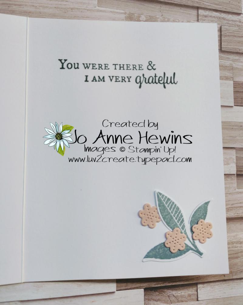 NC Demo Blog Hop for June Plentiful Plants Inside by Jo Anne Hewins